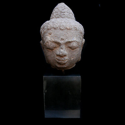 Central Java volcanic stone (andesite) head of Buddha y2846