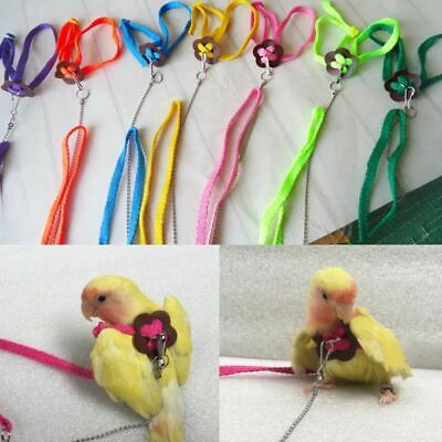 Bird Parrot  Adjustable Harness Lead Leash Anti Bite Rope for Cockatiel Budgie