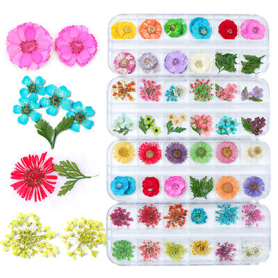 Dried Flower Leaf Nail Decor Natural Floral Sticker 3D Dry Beauty Nail Art Decal