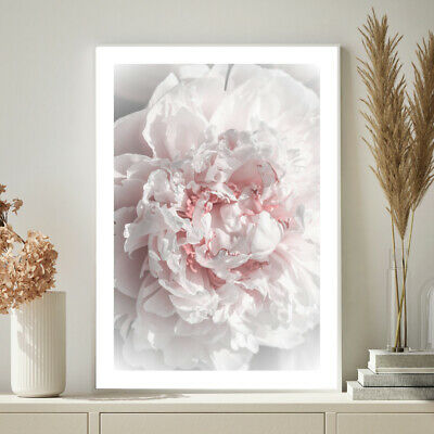Peony Rose Botanical Blush Pink Home Bedroom Wall Art Print Poster A4 A3 A2 A1