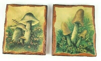 2 Vintage Decoupage Mushroom Wood Wall Hanging Art Mid Century Modern Decor