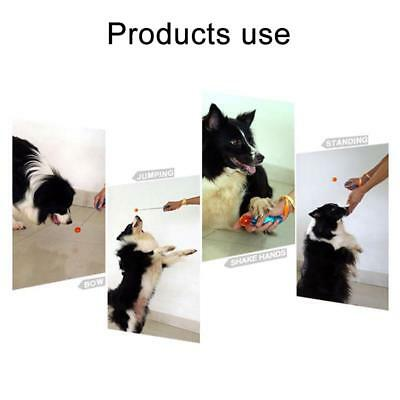 Puppy Agility Practice Clickers Guide Ball Cat Dog Training Clicker Pet Toy Tool