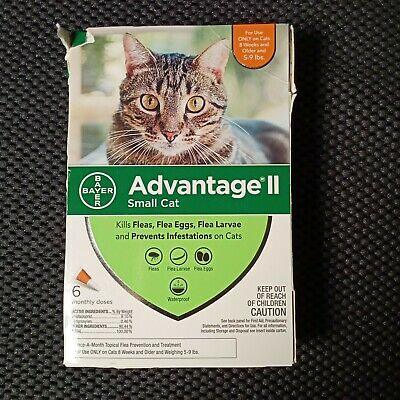 Bayer Advantage II Flea Prevention for Small Cats 5-9 lbs 6 pack damaged box