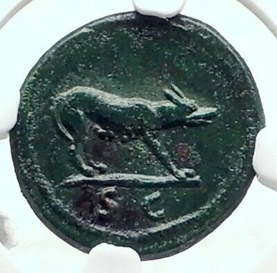 TRAJAN 109AD Rome Quadrans Authentic Ancient Roman Coin She Wolf NGC i80135