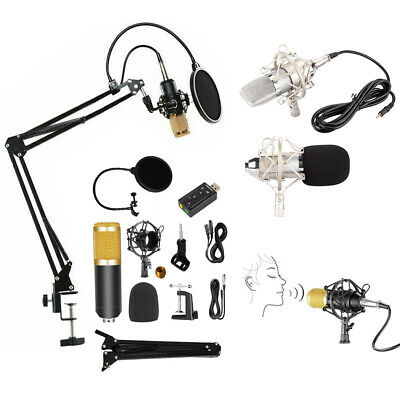 Professional Studio Condenser Microphone Kit Recording Broadcasting Shock Mount