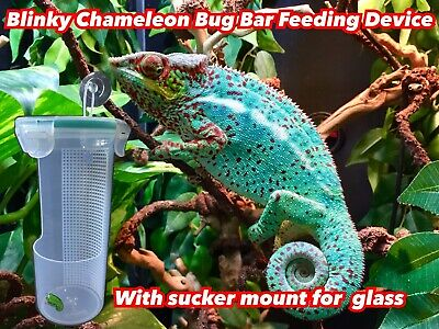 Chameleon Reptile Bug Bar Feeder Cup With Sucker Mount For Glass Crickets Locust