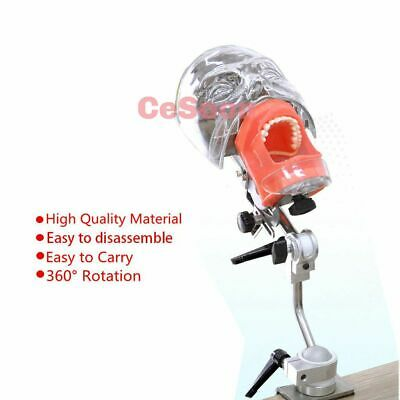 Dental Phantom Head Model New Bench Mount for Oral Cavity Simulation Training