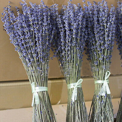 1Bunch Dried Natural Lavender Flower Bouquets Flower Bunches Home Decor UK STOCK
