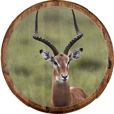 Whiskey Barrel Head Antelope with Beautiful Long Horns in the Wildlife Bar Sign