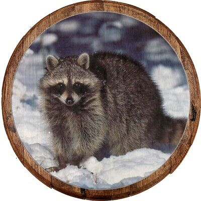 RACCOON - FOREST Animal - Woods - Iron On Embroidered Patch