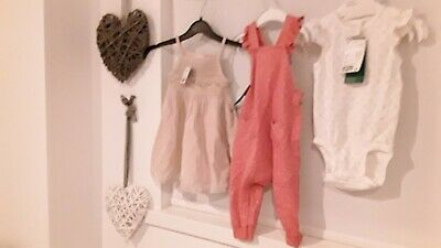 Lovely Bundle Baby Girls Clothes Age 3-9 Months New With Tags (H&M/Next)