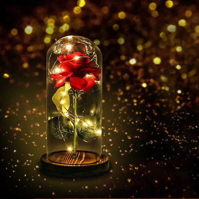 Enchanted Rose Glass Beauty And The Beast LED Lighted Wedding Home Decor Gift US