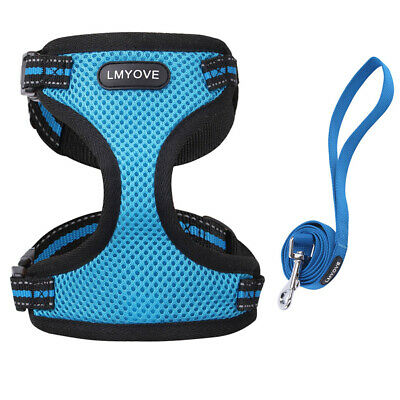 Adjustable Soft Mesh Pet Cat Harness with Leash