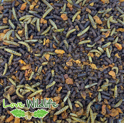 Hedgehog Food Crumble - Native Hedgehogs - Insect Meal, Pro-Biotic, NO MEALWORMS