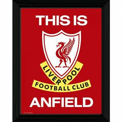 Liverpool F.C. Picture T.I.A. 16 x 12 Sport Football Gift Idea
