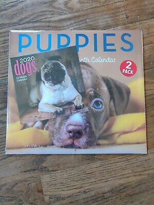 2020 12 Month Wall Calendar  Puppies 2 pack Brand New Sealed Lg.11x12 Sm.6x6
