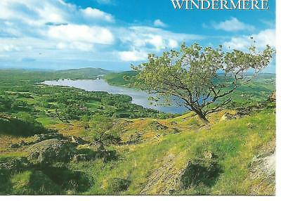 """Windermere from Wansfell, Lake District Postcard 4"""" x 6"""""""