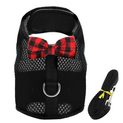 Air Mesh Cat Harness & Leash Large Small Kitten Walking Jacket Escape Proof S-L