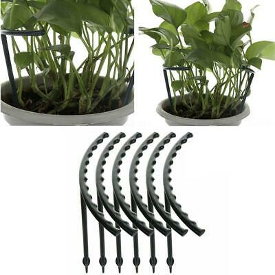 12* Plant Support Stake Garden Flower Grow Climbing Trellis Stand Protect Holder