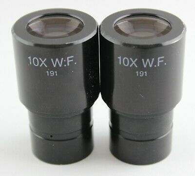 Pair Reichert AO 10x WF Cat 191 Microscope Eyepieces