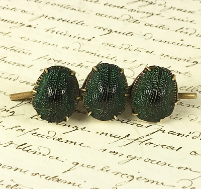 Antique Victorian 3 Scarab Bar Brooch, Excellent, Real Egyptian Scarab Beetles