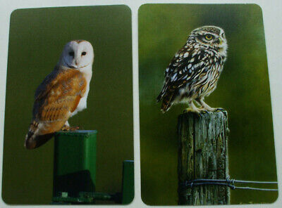 2 Single Swap Playing Cards Birds Beautiful Owls Perched Pair