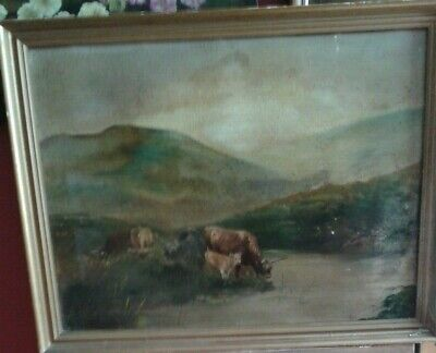 Fine Early 20 thc, Large Scottish School Oil on Canvas . Highland Cattle Study.