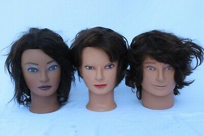 Lot Of 3 Diane by Fromm HairArt Mannequin Cosmetology Heads Human Hair + Stand