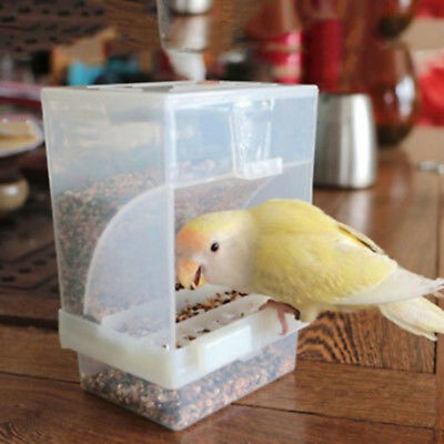 Bird Poultry Feeder Automatic Acrylic Food Container Parrot Pigeon Splash Proof^