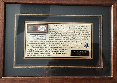 ANCIENT Egyptian SCARAB Beetle Seal Hieroglyph. BEAUTIFULLY FRAMED  LOT IA