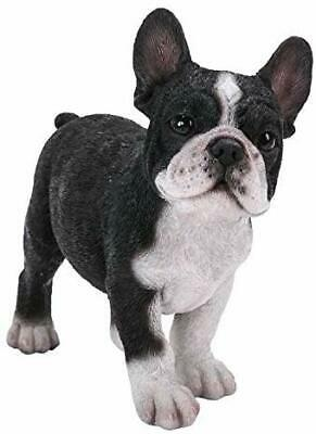 Ebros Gift Realist Look French Bulldog Puppy Standing Resin Figurine Statue