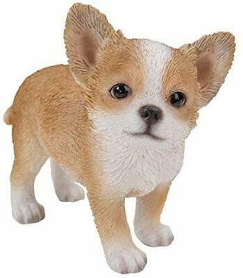 Ebros Gift Realist Look Chihuahua Puppy Standing Resin Figurine Statue