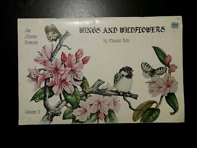 Wings And Wildflowers Claudia Nice 1983 Scheewe Sketch Draw Paint Bird Butterfly