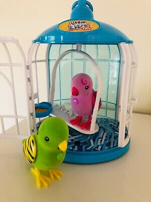 Little Live Pets - Two Birds in their Cage