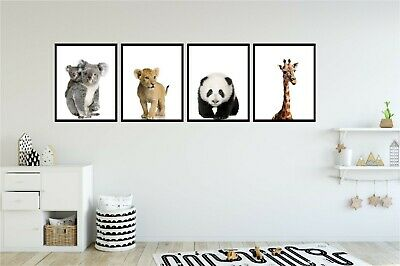 Pack Of 4 Childrens Baby Animal Nursery Bedroom Photo Wall Art Sticker Poster