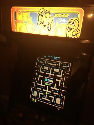 Ms Pac-Man, Space Invaders, Mr Do!, Donkey Kong, Frogger Arcade Machine