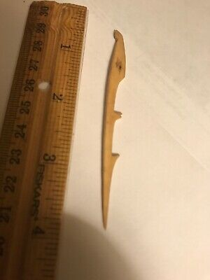Antique Alaska Inuit Eskimo Native American Harpoon Spear Head Artifact Indian