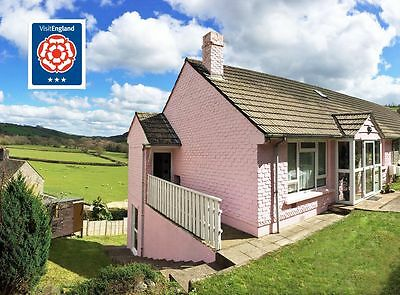 North Devon HOLIDAY cottage let, JULY 2020, (6-8 people + pets) - from £665