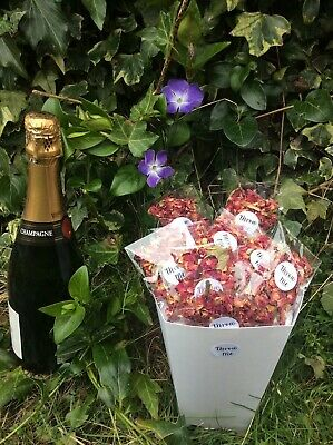 Biodegradable Wedding Flower Confetti Natural Dried Red Petal 25 bags + PINK BOX