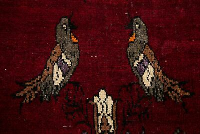 Animal Pictorial Wool Gabbeh Hand-Knotted Oriental Decorative Runner Rug 3'x7'