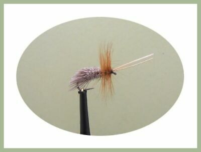 Grayling Dry Flies CDC Sedges Barbless Hooks,Trout Olive Scruffy Fly Fishing