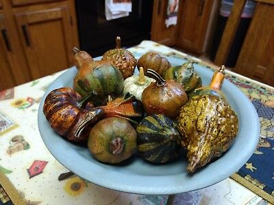 12 Hand Painted Assorted Resin Fall Gourds Pumpkins Salem Collection