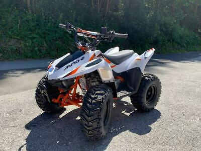 Quad ATV Kayo Goes Fox Mini Sport 70 Hochwertiges Kinderquad