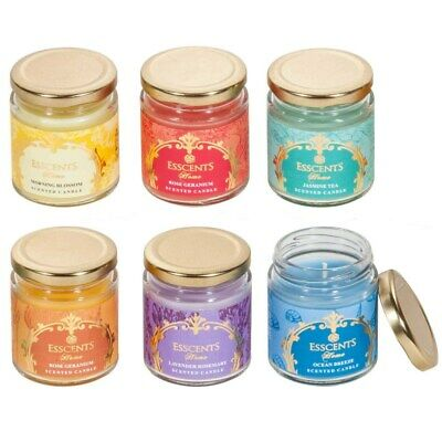 Aromatherapy Jar Candles | Pure Soy Wax & Essential Oils | 40 Hour, 6 Fragrances