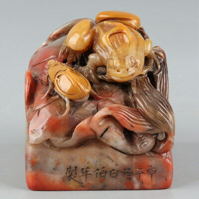 Chinese Exquisite Hand-carved frog insect Carving Shoushan Stone seal