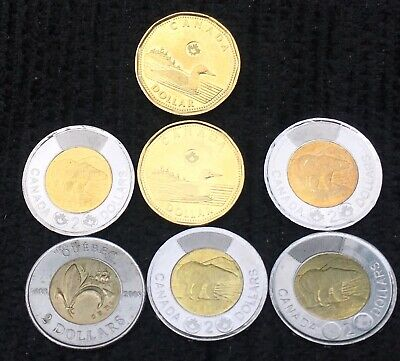 7 Mixed Coins Toonies/Loonies Canada 🇨🇦 all Canadian collection Circulated