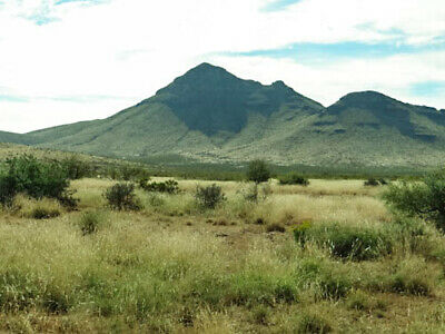 No Doc Fee 20 Acres Fort Hancock Texas Buy It Now, Mtns,Roads