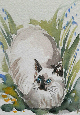 ACEO Cat  Original Watercolor painting  Art  2.5x3.5in by MK