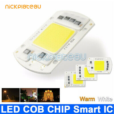 LED Chip COB Input Integrated Smart IC Driver Floodlight 20W30W50W100W 220V 110V