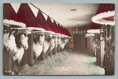 Swift & Company Draft Horse Stable RPPC Antique Chicago Advertising Photo 1910s